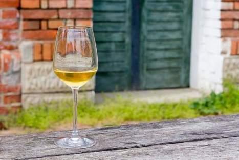 The subtleties of German #riesling | Vitabella Wine Daily Gossip | Scoop.it