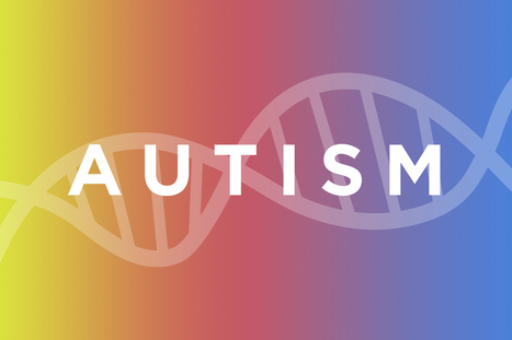 Scientists link single gene to some cases of autism spectrum disorder  | DNA and RNA Research | Scoop.it