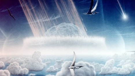 Over 90 percent of mammals were wiped out by dino-killing asteroid | Jeff Morris | Scoop.it