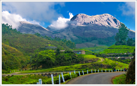 COCHIN MUNNAR  tour packages | arcadeensure | Scoop.it