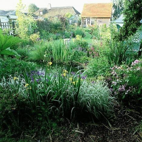 Five ways to attract wildlife to your garden | Gardening | Scoop.it