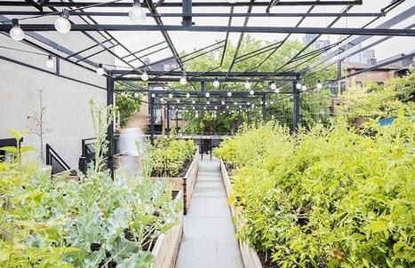 3 terrasses à visiter avant la fin de l'été | Elle Québec | Jardins urbains | Scoop.it
