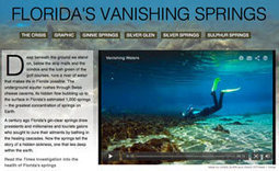 Florida Springs, Aquifer, And Drinking Water In Environmental Crisis (VIDEO) | Geography News | Scoop.it
