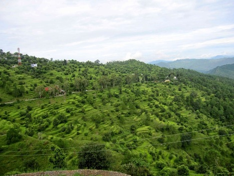 Ranikhet – A Place With Amazing Scenic Beauty And Charm | Ranikhet – A Place With Amazing Scenic Beauty And Charm | Scoop.it