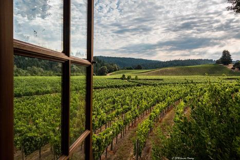 Postcard from Anderson Valley, California | Mendocino County Living | Scoop.it