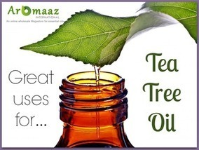 Top 6 Skin Care Uses of Tea Tree Natural Oils!! | Aromaaz International - Buy Pure and Natural Essential oils at Wholesale prices | Scoop.it