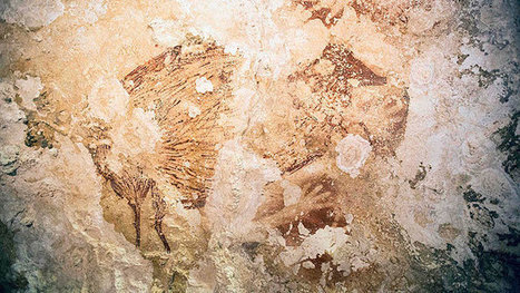 Ancient Indonesian cave paintings rewrite history of human art - CANOE | Digital ancient history | Scoop.it