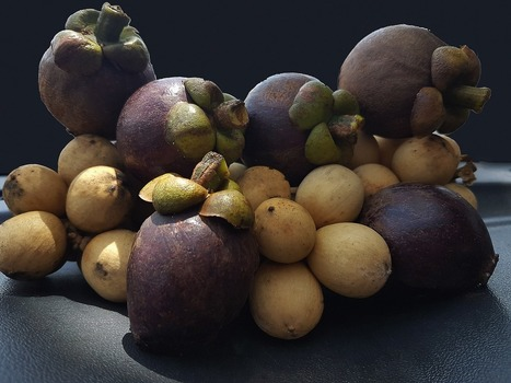 10 Interesting Facts about the Mangosteen Fruit | Trending | Scoop.it
