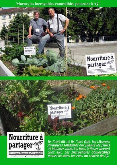 incredible edible info   Incroyables Comestibles France   Patchwork-petites et grandes choses   Scoop.it