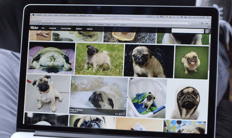 Impending Flickr Redesign Said to Simplify and Unify the Flickr Experience | photography in a digital world | Scoop.it