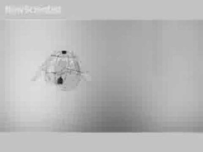 Robot Jellyfish Takes To The Air #Biomimicry « adafruit industries blog | Biomimicry | Scoop.it