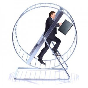Hamster Wheel or Business?   Transform Your Business   Transforming small business   Scoop.it
