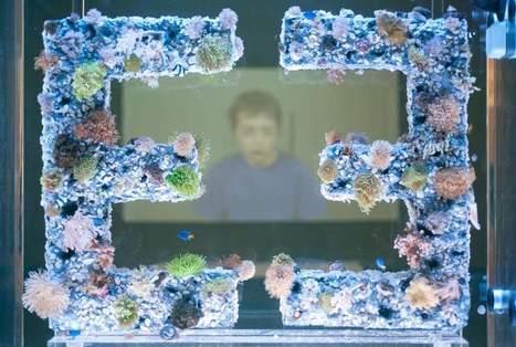 Carnegie Museum exhibit examines detached empathy of digital age | Empathy in the Arts | Scoop.it