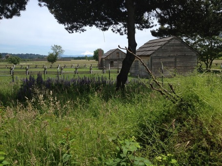 Fort Vancouver Public Archaeology | Archaeology News | Scoop.it