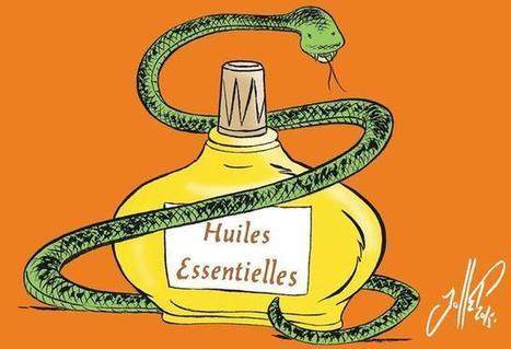 Les huiles essentielles réaniment l'hôpital | Huiles essentielles HE | Scoop.it