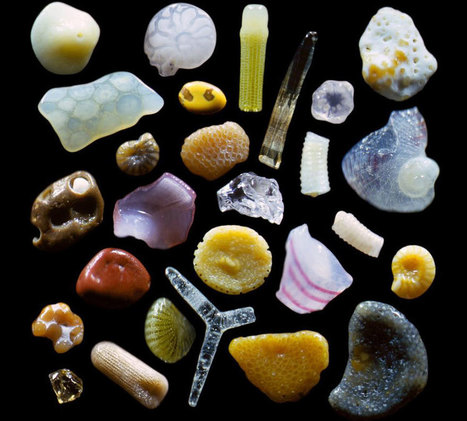 This Is How Sand Looks Magnified Up To 300 Times | CLOVER ENTERPRISES ''THE ENTERTAINMENT OF CHOICE'' | Scoop.it