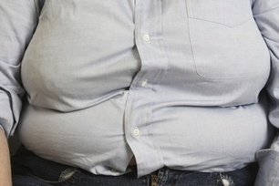 The Microbes in Your Gut May be Making You Fat | Bacteria Obesity | leapmind | Scoop.it