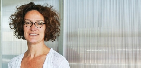 """Start-up: gare à """"la politique de gribouille"""" !   Startups !   Scoop.it"""