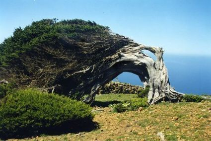 El Hierro (Espagne) sera la première île au monde autonome en énergie | Société durable | Scoop.it