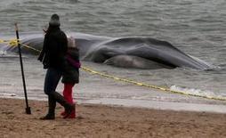 Ballena varada en una playa de Nueva York muere | Agua | Scoop.it