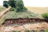 Vía romana de Clunia a Sasamón | Roman Roads - Vías Romanas | Scoop.it