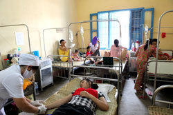 Dengue fever vaccine undergoes final trial in VietNam | Twisted Microbiology | Scoop.it