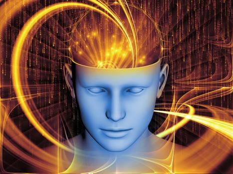 2014 Executive Coaching Survey: Neuroscience Soars | Coaching & Neuroscience | Scoop.it
