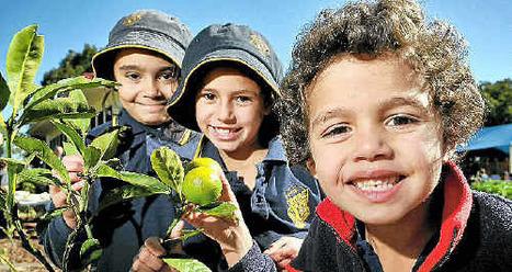 Students show off gardening skills - Toowoomba Chronicle | School Kitchen Gardens | Scoop.it
