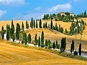 The Tuscan black oil: 43.4 million tourists visited Tuscany this year | Italia Mia | Scoop.it
