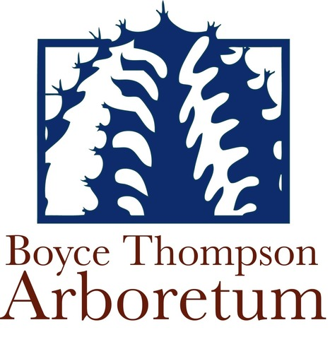 Boyce Thompson Arboretum Improves its Main Trail with Porous Pave   CALS in the News   Scoop.it