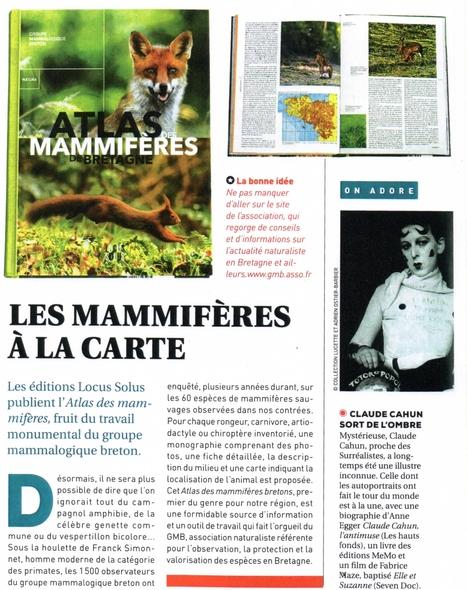 Les mammifères à la carte (Bretagne Magazine) | Revue de presse du Groupe Mammalogique Breton | Scoop.it