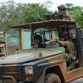 Infographie : 1 600 soldats français déployés en Centrafrique | Revue de tweets | Scoop.it