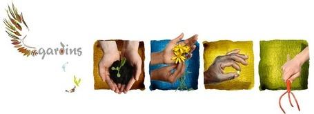 Le Manuel des jardiniers sans moyens - PDF - Online | Nature to Share | Scoop.it