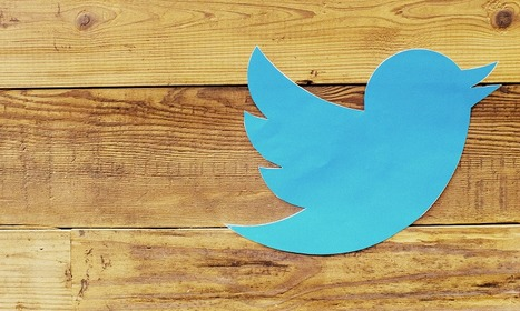 How to Be a Twitter Pro in 7 Steps | Social Media | Scoop.it