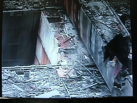 Steam emitting from Fukushima Daiichi reactor halts work | Enformable | menfin utopiste | Scoop.it