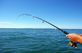 Top 5 Fishing Charters in Fernandina Beach, Florida - Yahoo! Sports | Boat News | Scoop.it