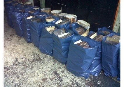 Environmentally Friendly Rubble Bags | The Best Waste Management Services | Scoop.it