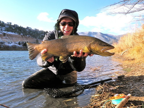 Green River fishing report - Turn Black Friday into Brown Friday on the Green - Salt Lake Tribune (blog) | Fish Habitat | Scoop.it