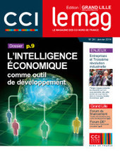 L'intelligence économique comme outil de développement, CCI Nord de France … | Le blog de l'information stratégique | Documentation et sciences de l'information | Scoop.it