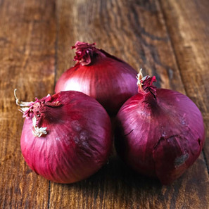 Red Wethersfield Onion Bulbs - (Allium cepa)-Store.underwoodgardens.com | Permaculture, Homesteading, Ecology, & Bio-Remediation | Scoop.it