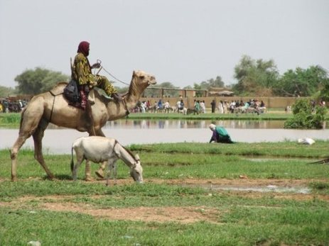 Photo Essay: Tradition and the Sahel | African News Agency | Scoop.it