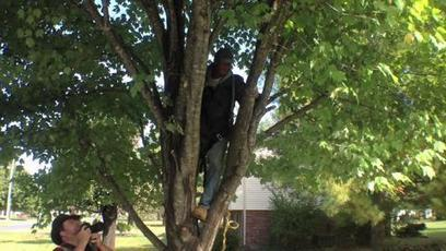 Ups and downs of tree-trimming business - Staunton News Leader | Cleaning My Sorroundings | Scoop.it