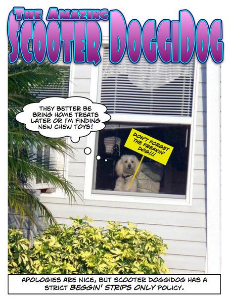 THE AMAZING SCOOTER DOGGIDOG | Scooter Doggidog | Scoop.it