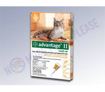 Capstar for Cats supplies quick aid of all the flea symptoms | Health | Scoop.it
