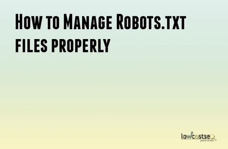 How to Manage Robots.txt files properly - SEO Help | LOWCOSTSEO.CO | Scoop.it