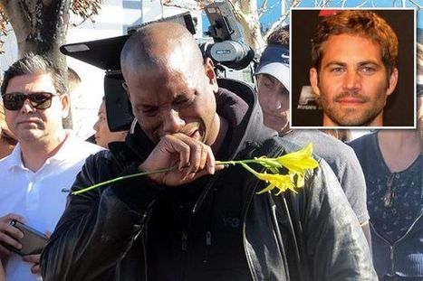Top 10 Reasons Paul Walker was Assassinated | Cool Top 10 Lists | Scoop.it
