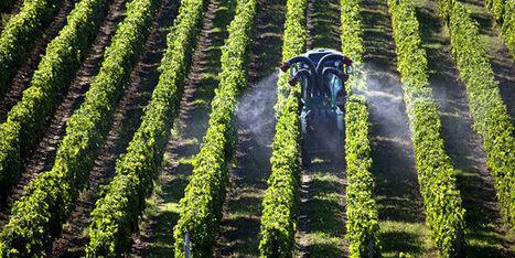 Des pesticides en doses toujours plus massives dans les campagnes | Radiopirate | Scoop.it