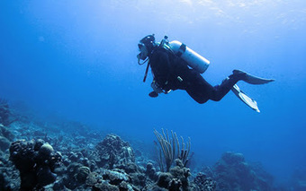 SCUBA SCOOP/latest dive stories: 4 Effective Strategies In Preserving Air While Underwater | All about water, the oceans, environmental issues | Scoop.it