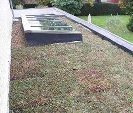 Posez vous-même et simplement une toiture végétalisée extensive ! | Immobilier | Scoop.it