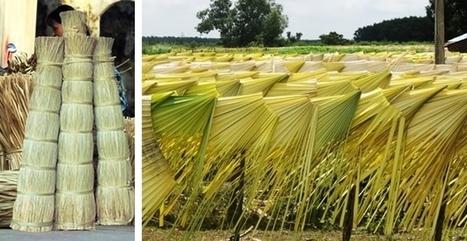 Vdeltagoods,vietnam export company, vietnam export centre, vietnam agricultural export | STRAW HAT | Scoop.it
